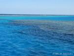 dem Riff entlang